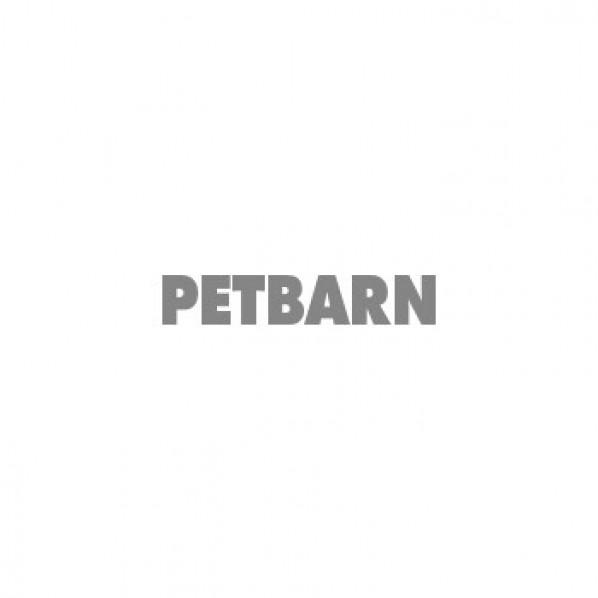 Bootique Skeleton Plush Flattie Dog Toy Blue 15cm