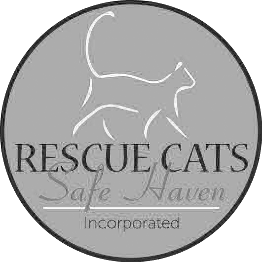 Rescue Cats Safe Haven