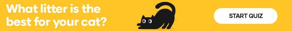 Cat Litter Finder
