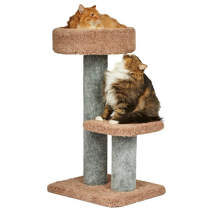 Cat Scratching Posts, Trees and Towers