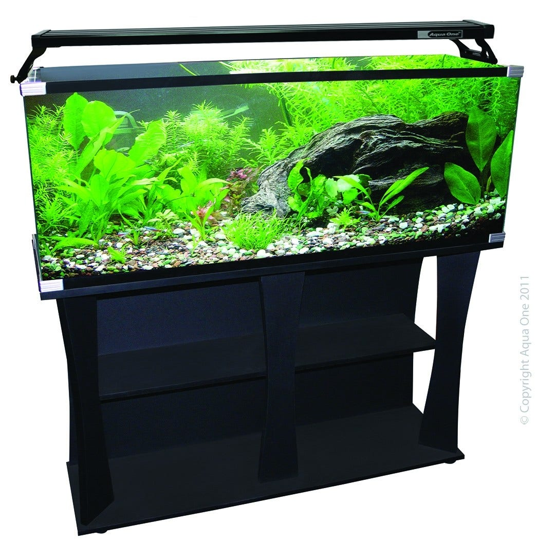 Aquariums and Fish Tank Stands