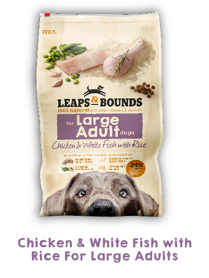 Leap And Bounds Dog Food