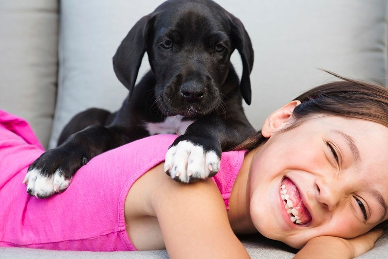 Your puppy's vaccination schedule