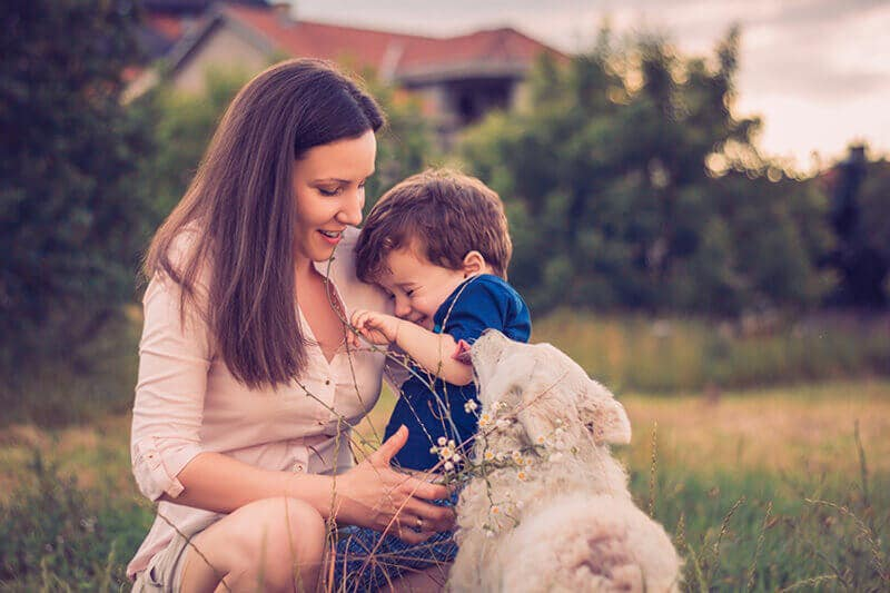How do you introduce a puppy to a new family