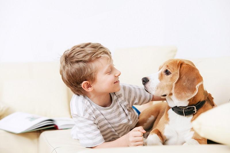 Should I let my pet sleep on the floor of my child's bedroom?