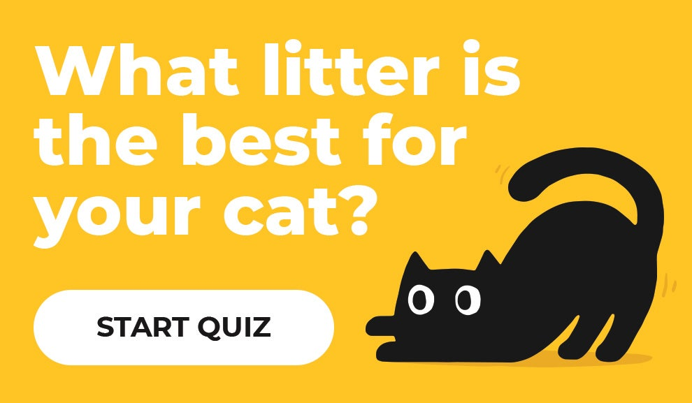 Start the cat litter finder tool to find the best match for you and your pet
