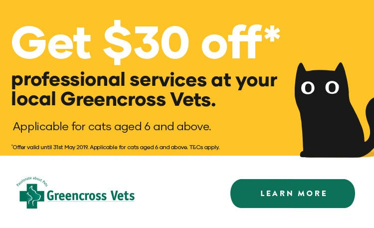 Get $30 off professional services for cats aged 6+ at Greencross Vets