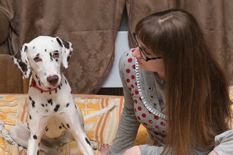 Symptoms of anxiety in dogs and how you can help