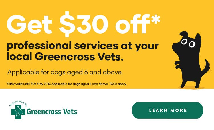 Get $30 off professional services for dogs 6+ at Greencross Vets