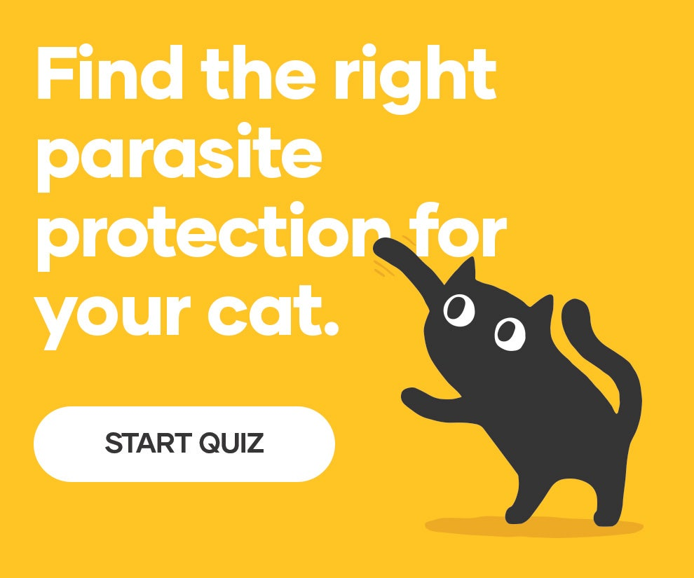 Try our Cat Flea, Tick and Worm Treatment Finder