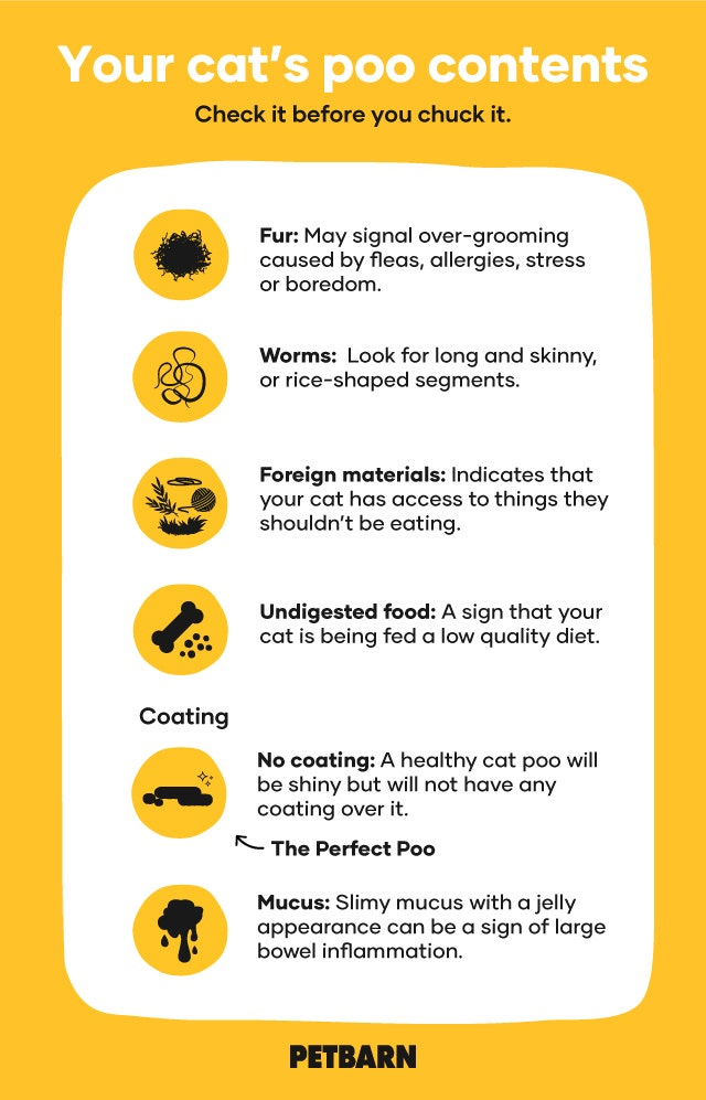 Cat Poo Contents and Coating Chart
