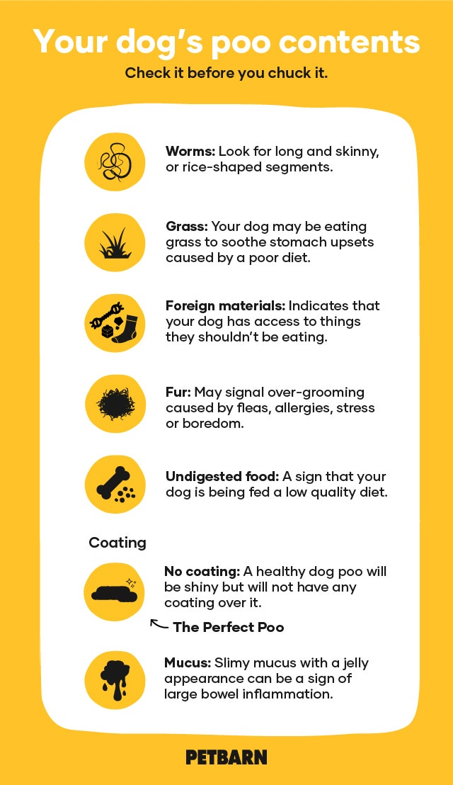 Dog Poo Contents and Coating Chart