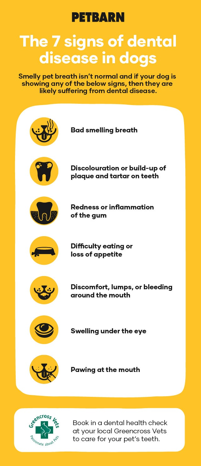 7 signs of dental disease in dogs