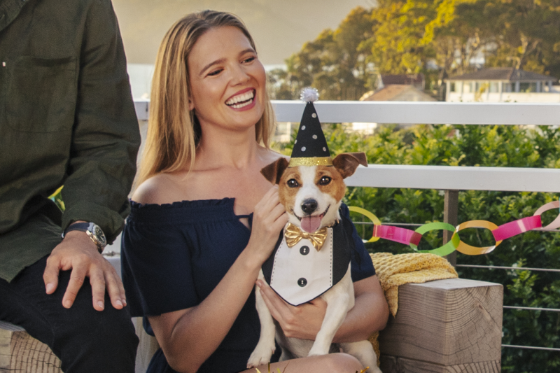 Festive celebrations and your dog