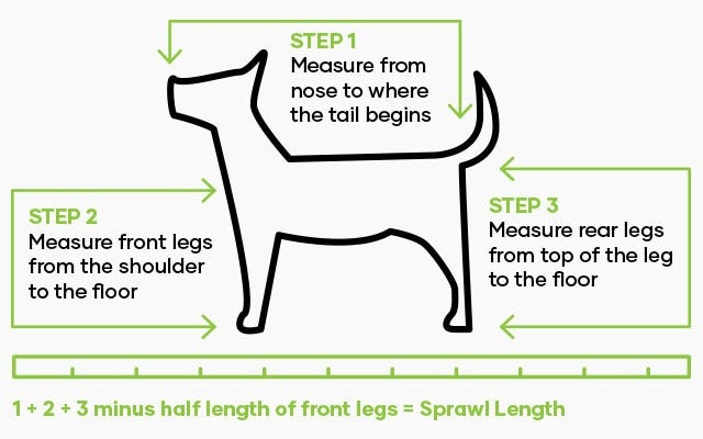 How to measure your dog for a bed