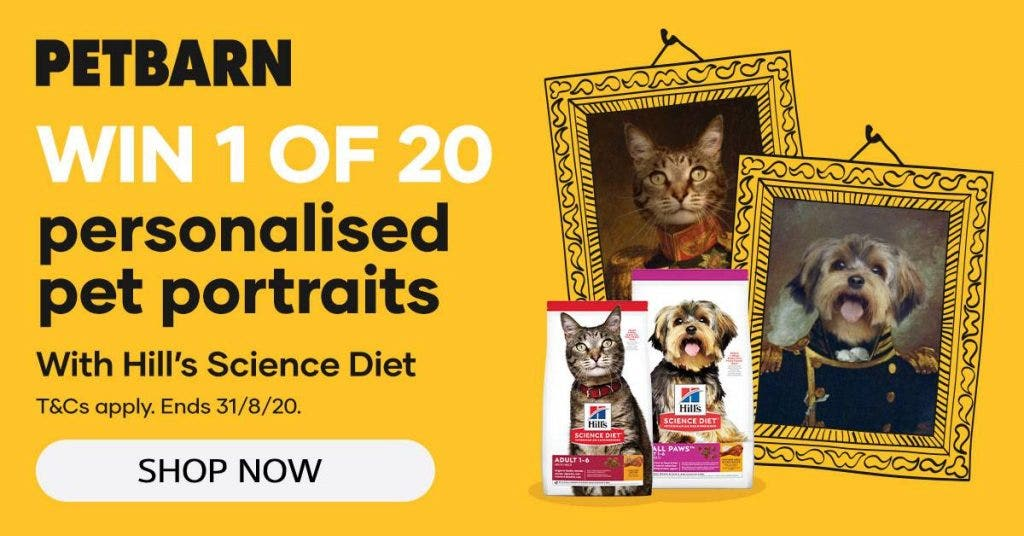 Hill's Science Diet - Win 1 of 20 personalised pet portraits